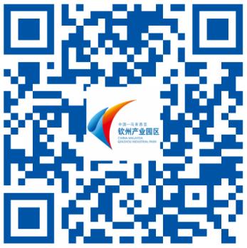 网站中文版